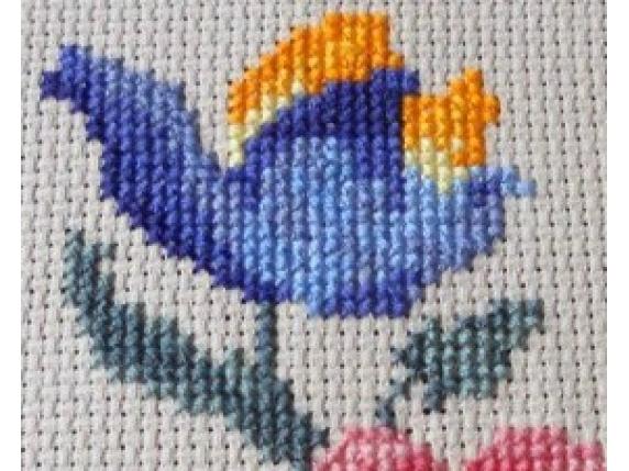 close up blue tulip