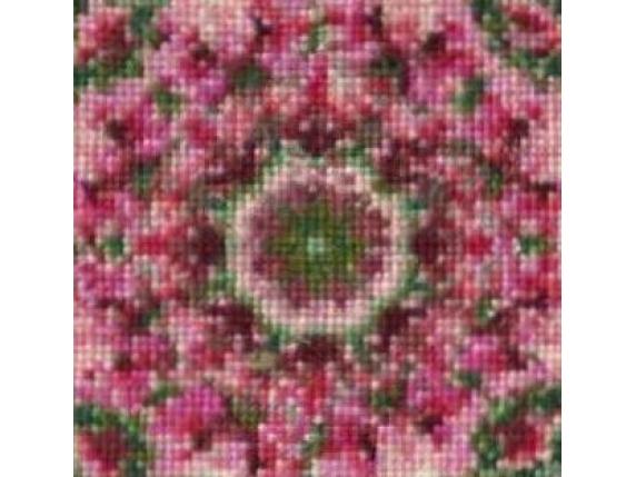 center close up rose mandala