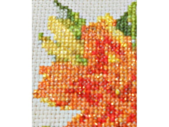 Sparkling Orange Day Lily  $5.00