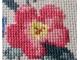 close up pink flower yellow center