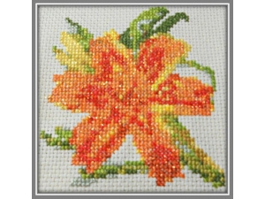 Sparkling Orange Day Lily  $5.00